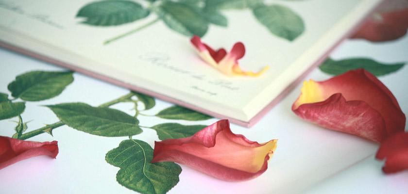 La fiesta del libro y la rosa en tu móvil