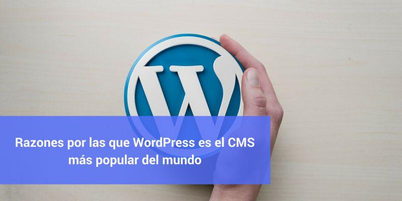 Razones por las que WordPress es el CMS más popular del mundo