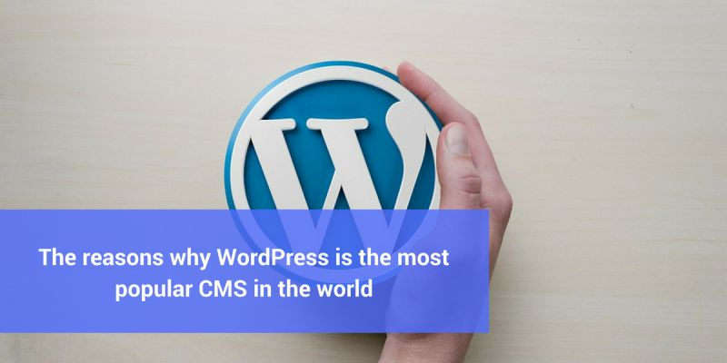 The reasons why WordPress is the most popular CMS in the world