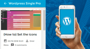 WordPress, Single, Pro